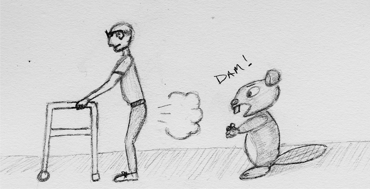 Shooting a beaver. Dam!