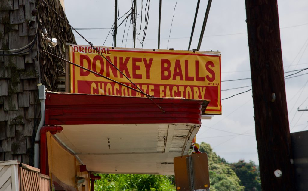 The Donkey Balls Factory Store