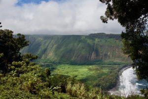 Picture of Waipi'o Valley Lookout