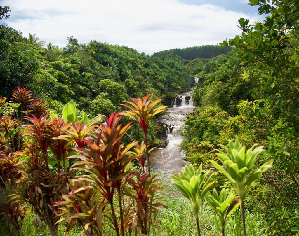 Umauma Falls