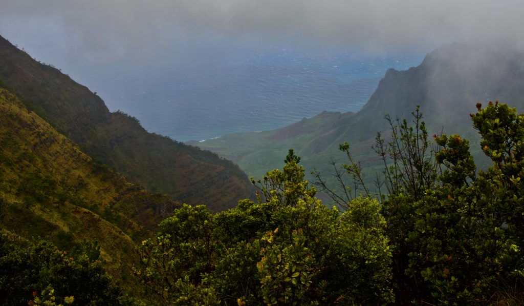 The view at Pu'u O Kila Lookout.