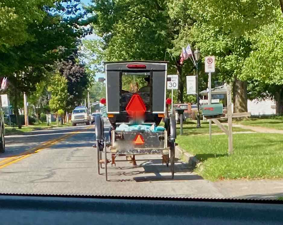 Picture of Amish horse and buggy.